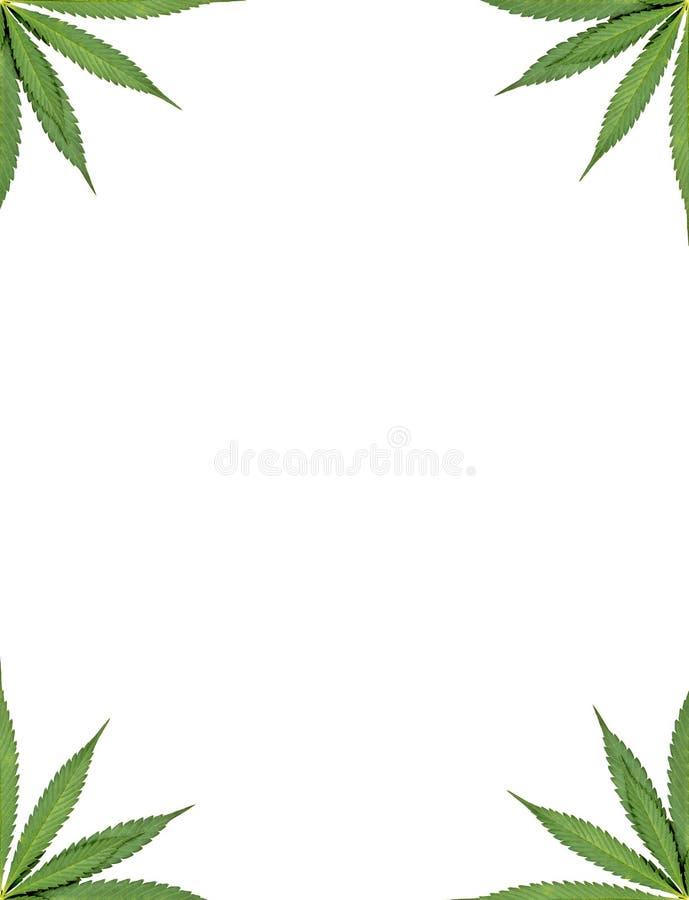 Πλαίσιο μαριχουάνα στοκ φωτογραφία