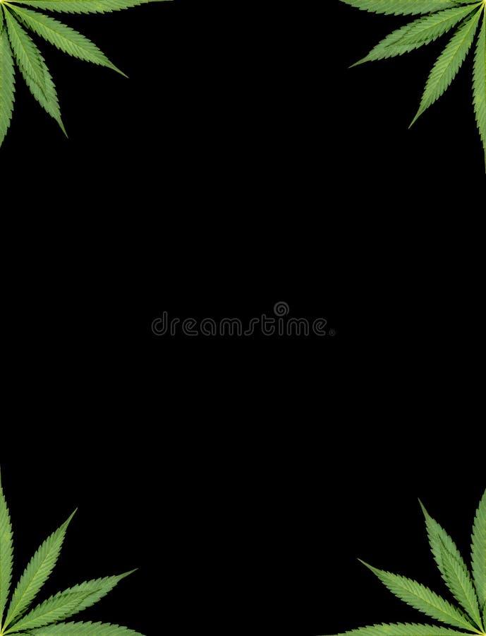Πλαίσιο μαριχουάνα στοκ φωτογραφία με δικαίωμα ελεύθερης χρήσης