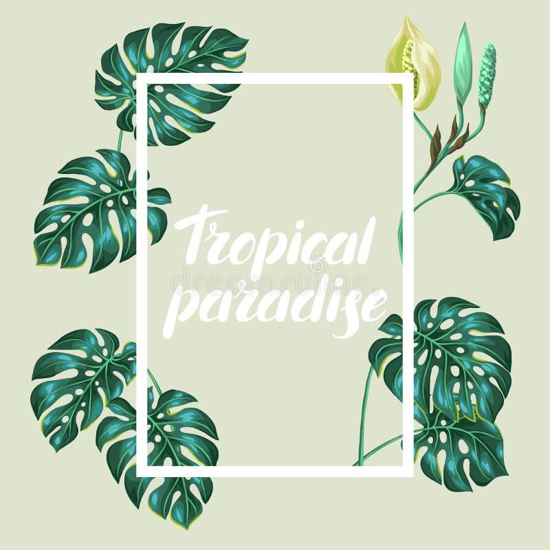 Πλαίσιο με τα φύλλα monstera Διακοσμητική εικόνα του τροπικών φυλλώματος και του λουλουδιού Σχέδιο για τη διαφήμιση των βιβλιάριω απεικόνιση αποθεμάτων