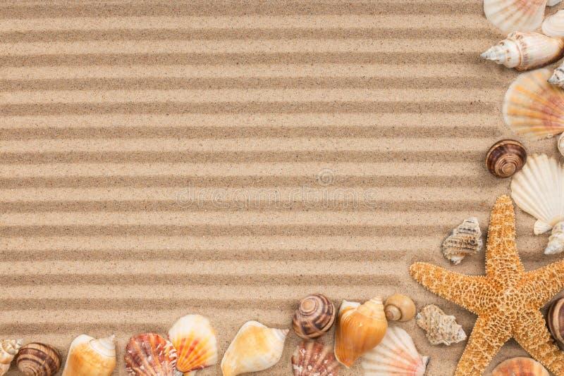 Πλαίσιο των θαλασσινών κοχυλιών και των αστεριών στη ριγωτή άμμο στοκ εικόνες