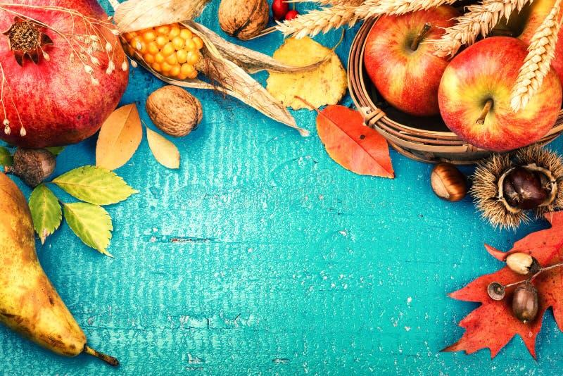 Πλαίσιο φθινοπώρου με τα φύλλα ροδιών, μήλων και πτώσης Πτώση backg στοκ φωτογραφίες