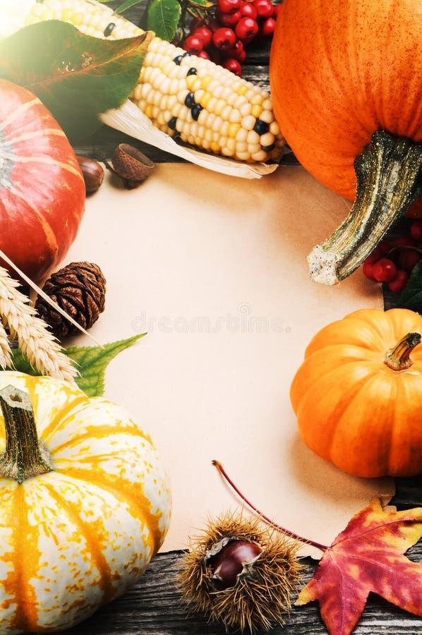 Πλαίσιο φθινοπώρου με τις κολοκύθες, το καλαμπόκι και τα φύλλα στοκ εικόνα με δικαίωμα ελεύθερης χρήσης