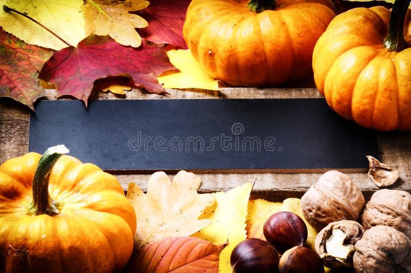 Πλαίσιο φθινοπώρου με τις κολοκύθες στοκ εικόνα