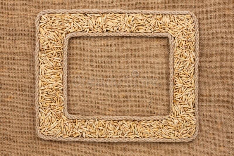 Πλαίσιο δύο φιαγμένο από σχοινί με τα σιτάρια βρωμών sackcloth στοκ εικόνα με δικαίωμα ελεύθερης χρήσης