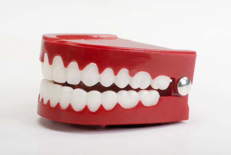 Πλαστά δόντια παιχνιδιών στοκ φωτογραφίες με δικαίωμα ελεύθερης χρήσης