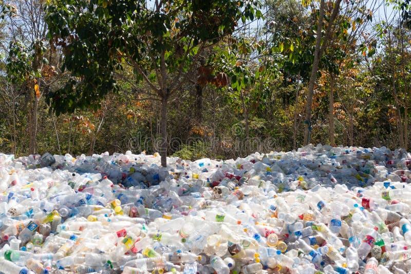 Πλαστικά μπουκάλια στη φύση στοκ φωτογραφία