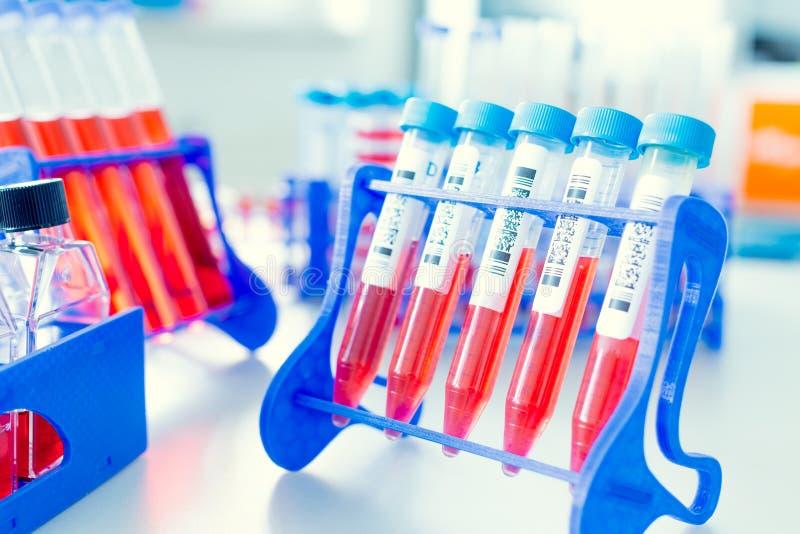 Πλαστικές προμήθειες βιοτεχνολογίας στοκ εικόνες με δικαίωμα ελεύθερης χρήσης