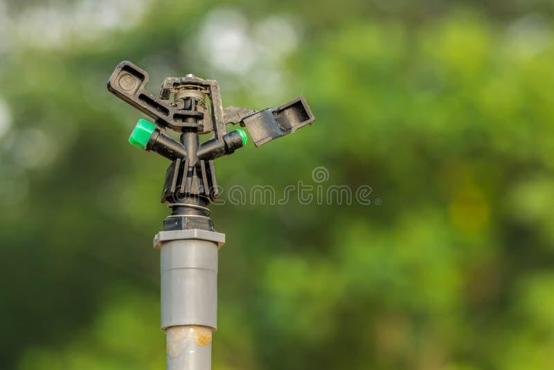 Πλαστικός ψεκαστήρας νερού στοκ εικόνες