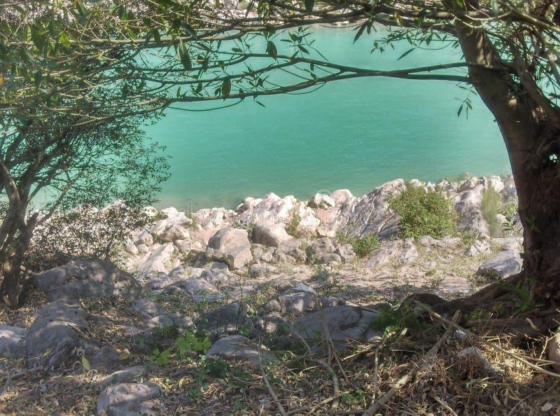 Πλευρά ποταμών στοκ φωτογραφίες με δικαίωμα ελεύθερης χρήσης
