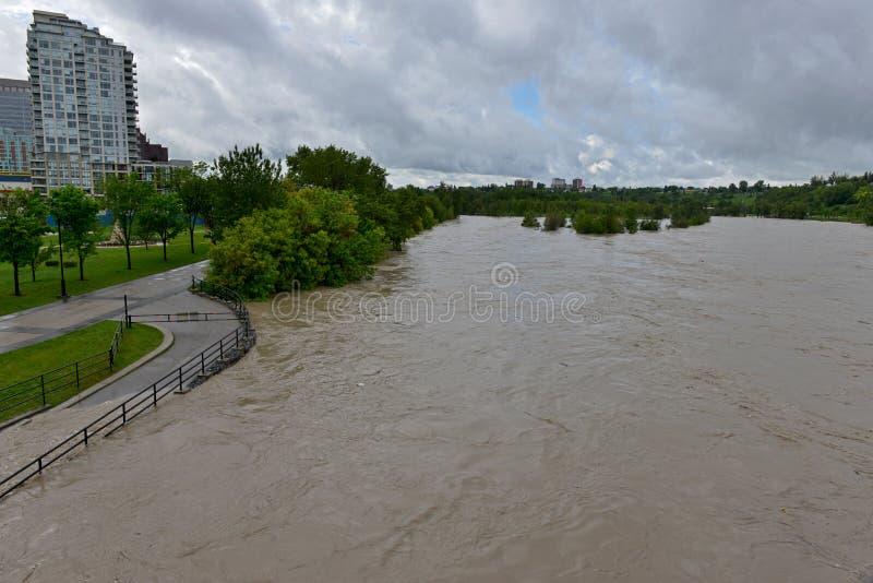 Πλημμύρα 2013 του Κάλγκαρι στοκ εικόνες με δικαίωμα ελεύθερης χρήσης
