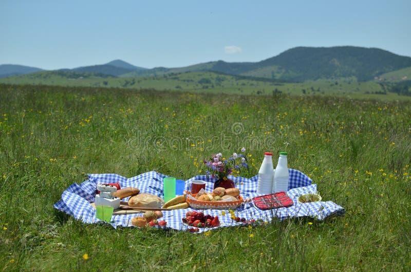 Πλούσια τρόφιμα πικ-νίκ στοκ φωτογραφίες με δικαίωμα ελεύθερης χρήσης