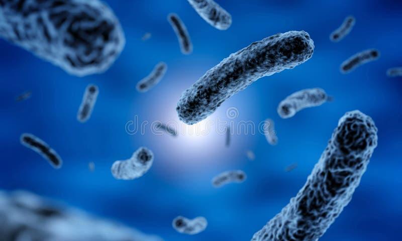 Ράβδος-διαμορφωμένα σκοτεινά βακτηρίδια διανυσματική απεικόνιση