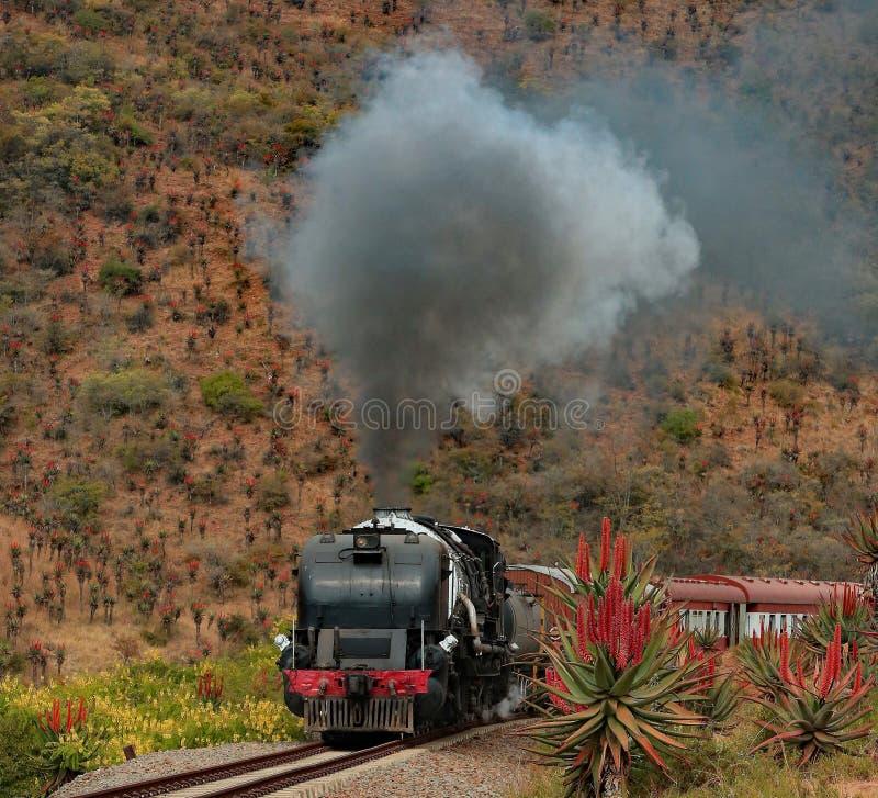 Ράγα S χώρας Paton Α Τραίνο ατμού GMAM Garrat στοκ φωτογραφία