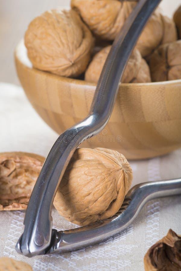 Ράγισμα και ξεφλούδισμα των ξύλων καρυδιάς στοκ φωτογραφία