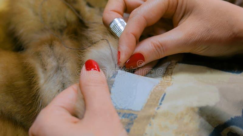 Ράφτης που επισκευάζει το παλτό γουνών στοκ φωτογραφία