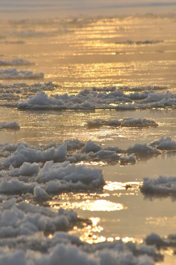 Ρέοντας ποταμός επιπλέοντος πάγου Τα μέσα του χειμώνα Η κοίτη ποταμού Χαμηλές θερμοκρασίες στην παγωμένη ημέρα στοκ εικόνες