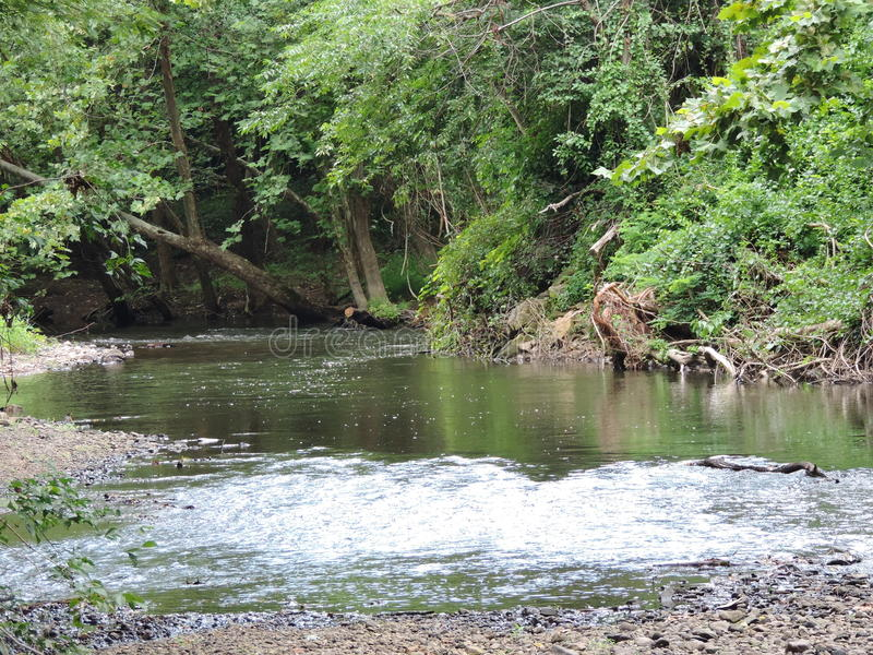 ρέοντας ποταμός στοκ εικόνα