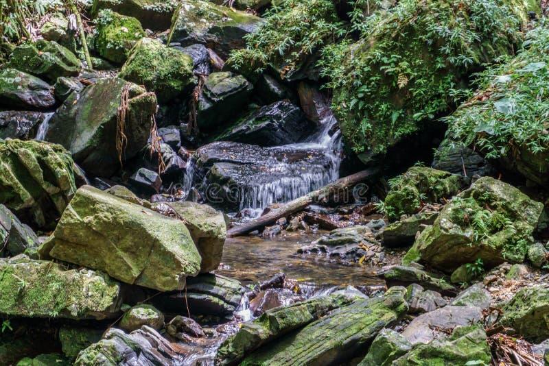 Ρέοντας ρεύμα βουνών στοκ φωτογραφία με δικαίωμα ελεύθερης χρήσης