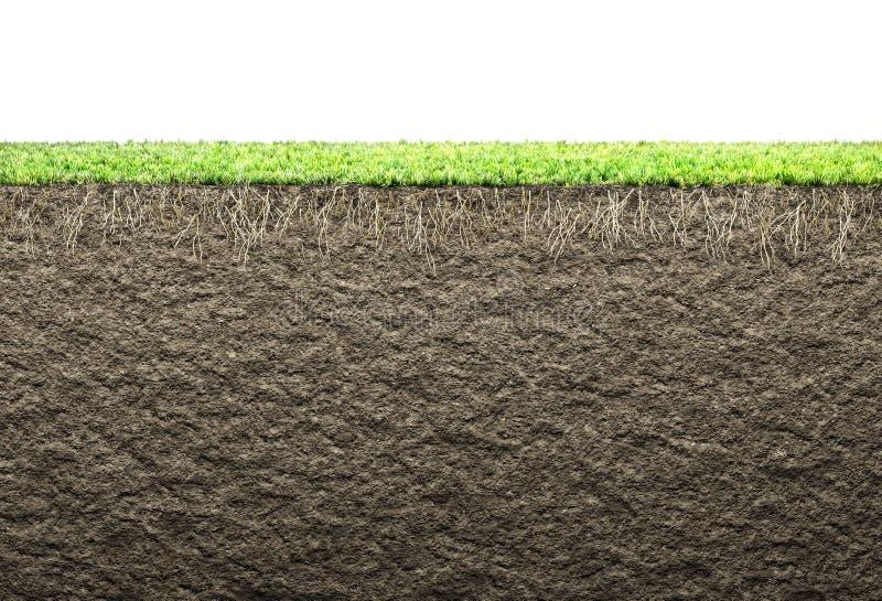 Ρίζες και χώμα απεικόνιση αποθεμάτων