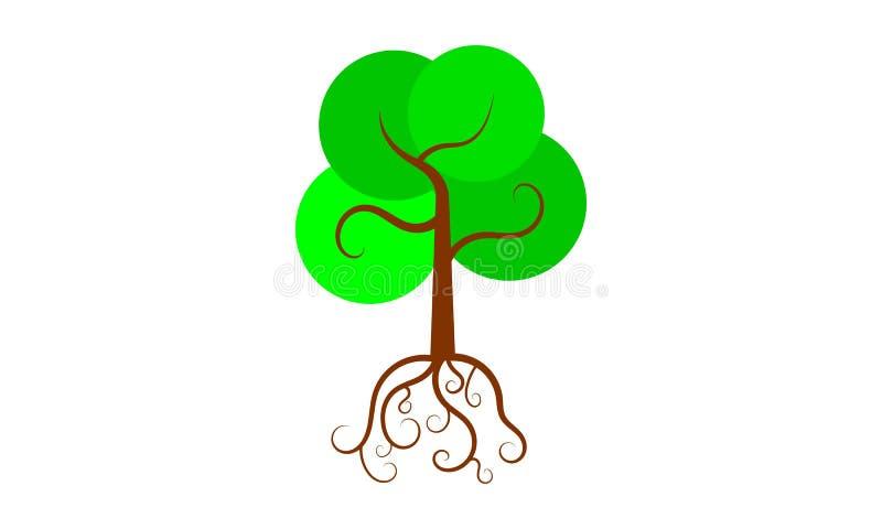 Ρίζες του πράσινου δέντρου στοκ εικόνες