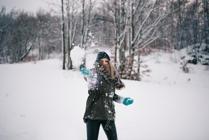 Ρίψη της χιονιάς στοκ εικόνες