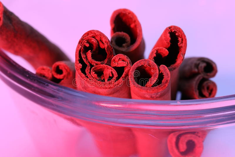 Ραβδιά κανέλας - καρυκεύματα στοκ εικόνες