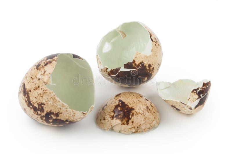 Ραγισμένα αυγά ορτυκιών στοκ εικόνες