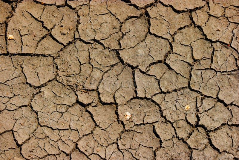 Ραγισμένη εδαφολογική λάσπη - γήινη παγκόσμια αύξηση της θερμοκρασίας λόγω του φαινομένου του θερμοκηπίου, ξηρασία στην Αφρική στοκ εικόνα
