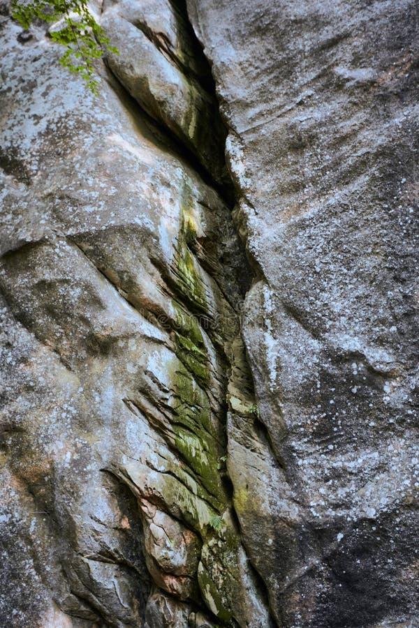 Ραγισμένη επιφάνεια ενός παλαιού βράχου με το βρύο και τη λειχήνα στοκ εικόνα με δικαίωμα ελεύθερης χρήσης