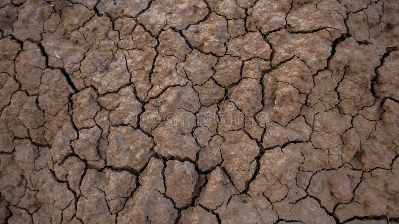 Ραγισμένο έδαφος της ξηρασίας στη γεωργία στοκ εικόνες με δικαίωμα ελεύθερης χρήσης