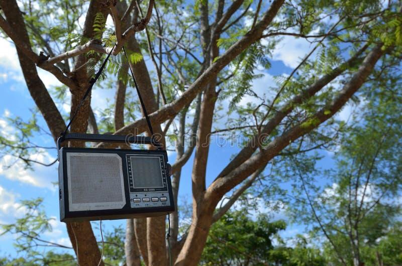 Download ραδιόφωνο στοκ εικόνες. εικόνα από ηλεκτρονικός, δέντρο - 22780356