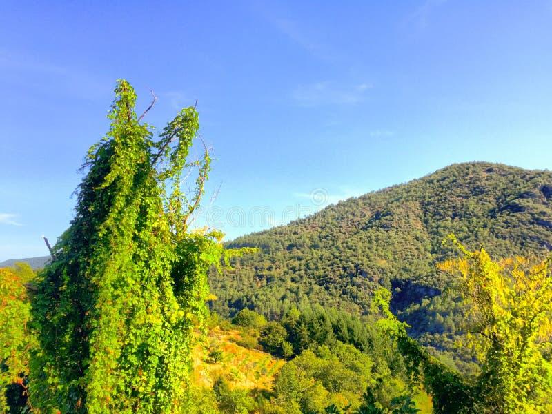 δραματικό βουνό τοπίων στοκ εικόνες