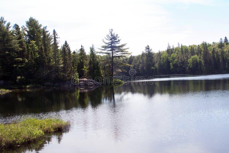 Ραμφίστε τη λίμνη, Algonquin επαρχιακό πάρκο 2 στοκ φωτογραφία με δικαίωμα ελεύθερης χρήσης
