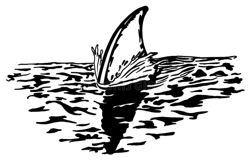 ραχιαία επιφάνεια καρχαρ&io ελεύθερη απεικόνιση δικαιώματος
