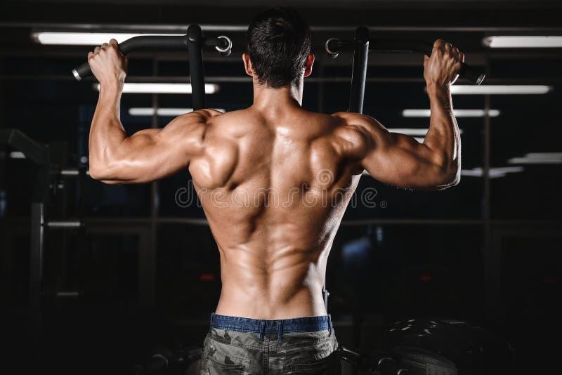 Ραχιαίος μυς man's πίσω στοκ φωτογραφία με δικαίωμα ελεύθερης χρήσης