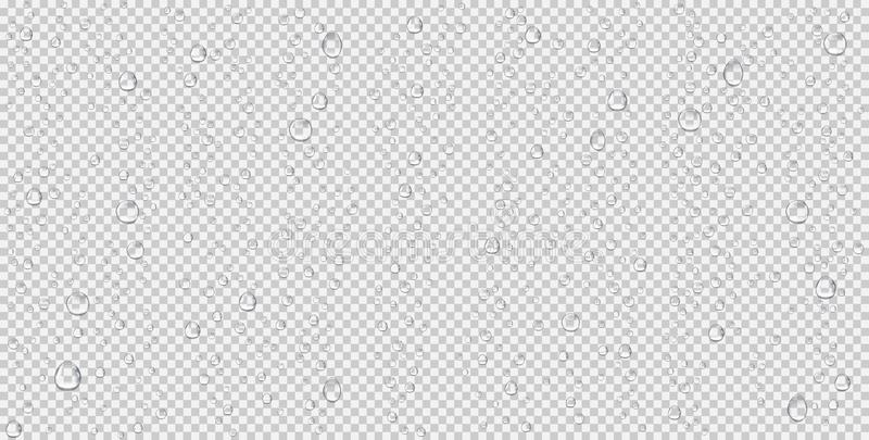 Ρεαλιστικές πτώσεις νερού, φυσαλίδες ατμού ή συμπύκνωση Σταγόνες βροχής στο διαφανές υπόβαθρο
