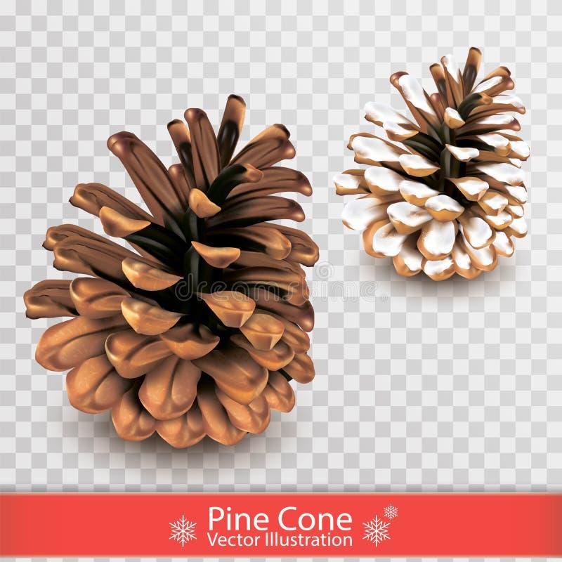 Ρεαλιστικός ξηρός κώνος πεύκων με το χιόνι που απομονώνεται στο διαφανές υπόβαθρο Αντικείμενο για το σχέδιο Σύνολο δύο pinecones  απεικόνιση αποθεμάτων