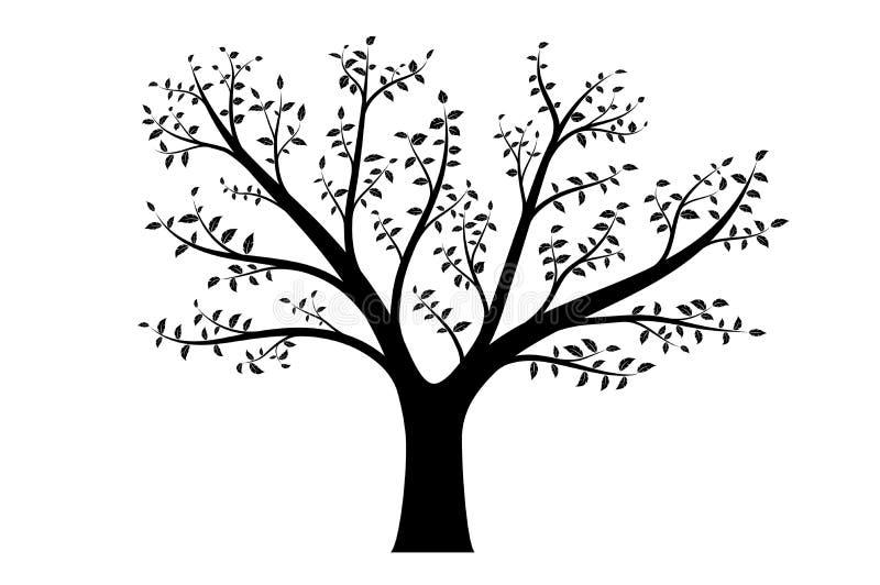 Ρεαλιστική διανυσματική απεικόνιση του δέντρου με τους κλάδους και τα φύλλα, που απομονώνεται ελεύθερη απεικόνιση δικαιώματος
