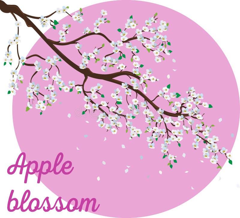Ρεαλιστικός κλάδος δέντρων μηλιάς με την ανθίζοντας απεικόνιση λουλουδιών διανυσματική απεικόνιση