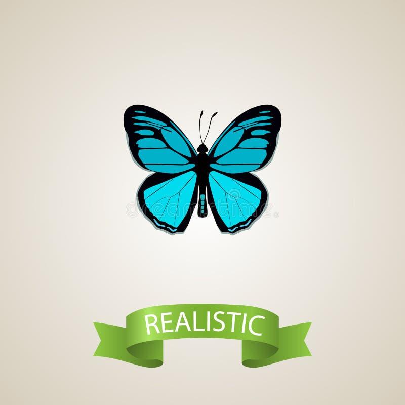 Ρεαλιστικό στοιχείο Papilio Ulysses Διανυσματική απεικόνιση του ρεαλιστικού ζώου ουρανού που απομονώνεται στο καθαρό υπόβαθρο μπο απεικόνιση αποθεμάτων