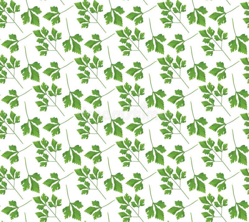 Ρεαλιστικό φυσικό άνευ ραφής σχέδιο με το πράσινο χορτάρι Κλάδος και φύλλα μαϊντανού στο άσπρο υπόβαθρο Ύφος χλωρίδας Διανυσματικ απεικόνιση αποθεμάτων