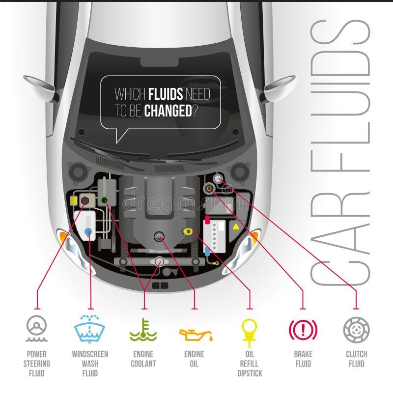 Ρευστά αυτοκινήτων κάτω από την κουκούλα του αυτοκινήτου απεικόνιση αποθεμάτων