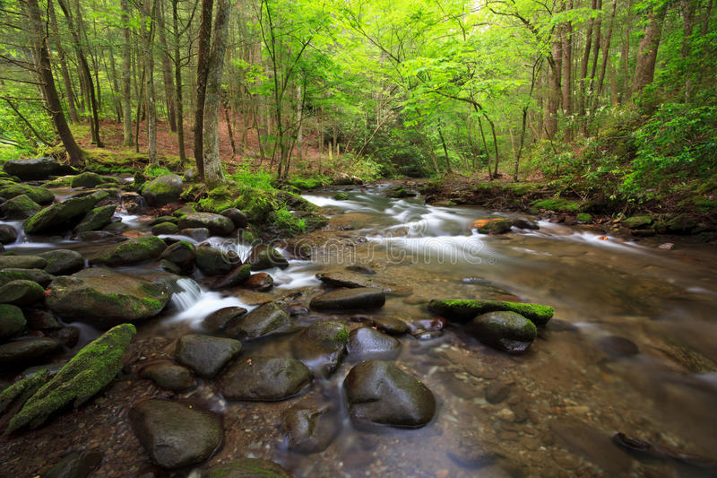 ρεύμα άνοιξη βουνών χρώματο&si στοκ φωτογραφία με δικαίωμα ελεύθερης χρήσης