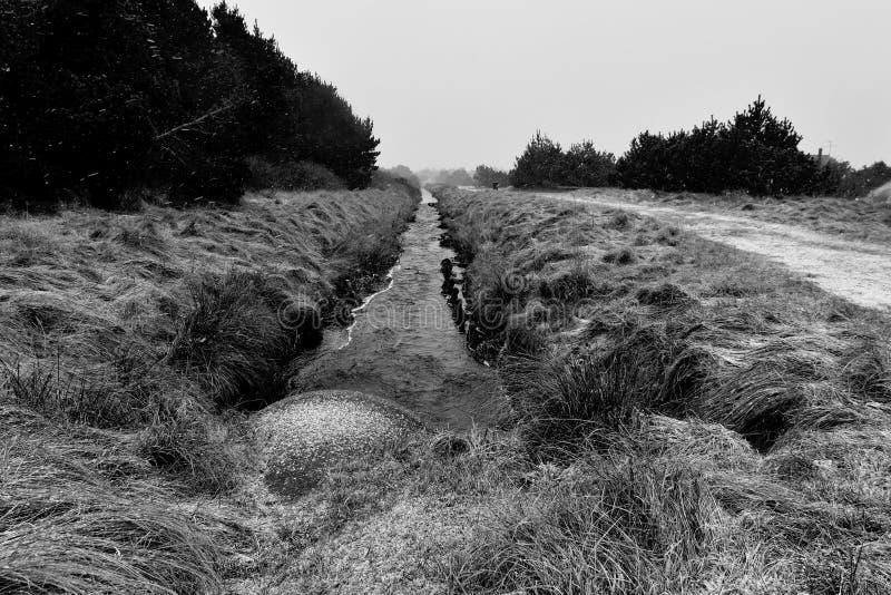 Ρεύμα αποξηράνσεων εδάφους χειμώνα στοκ εικόνα με δικαίωμα ελεύθερης χρήσης