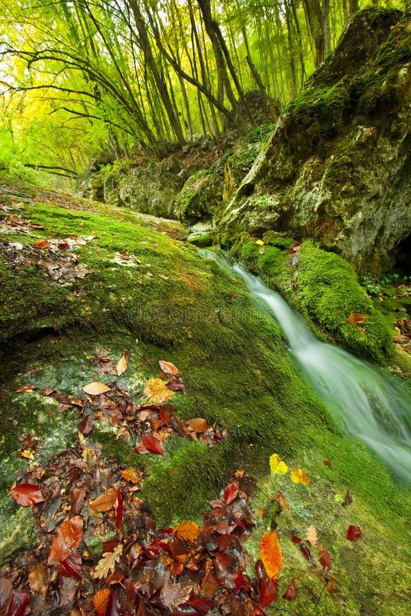 ρεύμα βουνών φθινοπώρου στοκ φωτογραφία