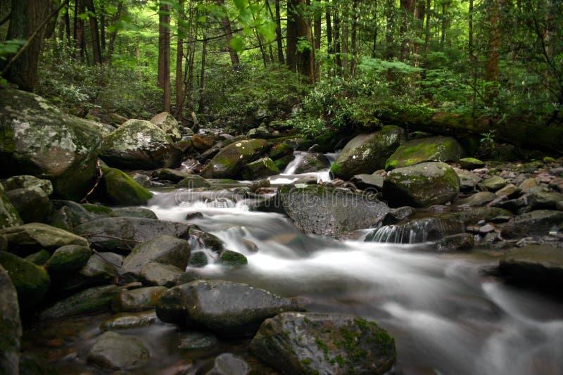 ρεύμα βουνών στοκ εικόνες με δικαίωμα ελεύθερης χρήσης