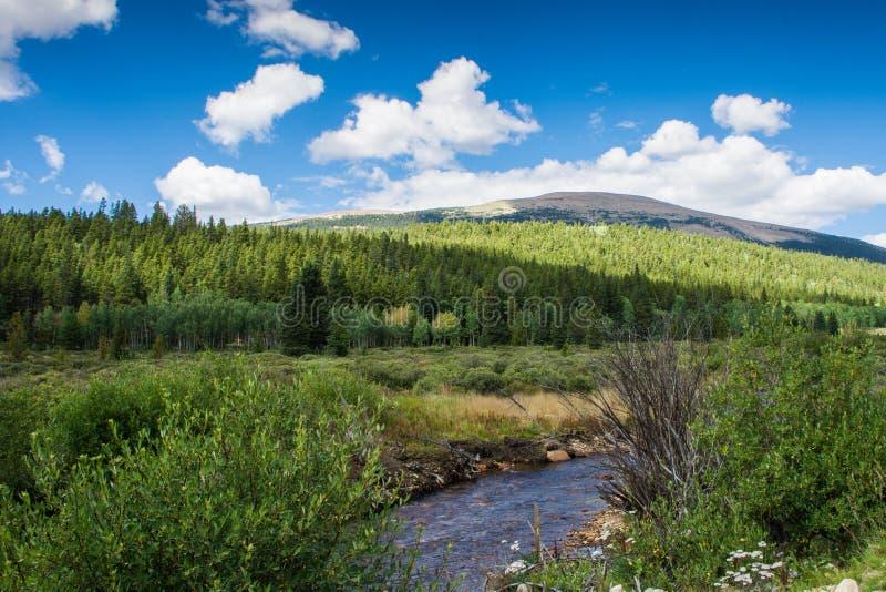 Ρεύμα βουνών Coolorado στοκ εικόνα με δικαίωμα ελεύθερης χρήσης