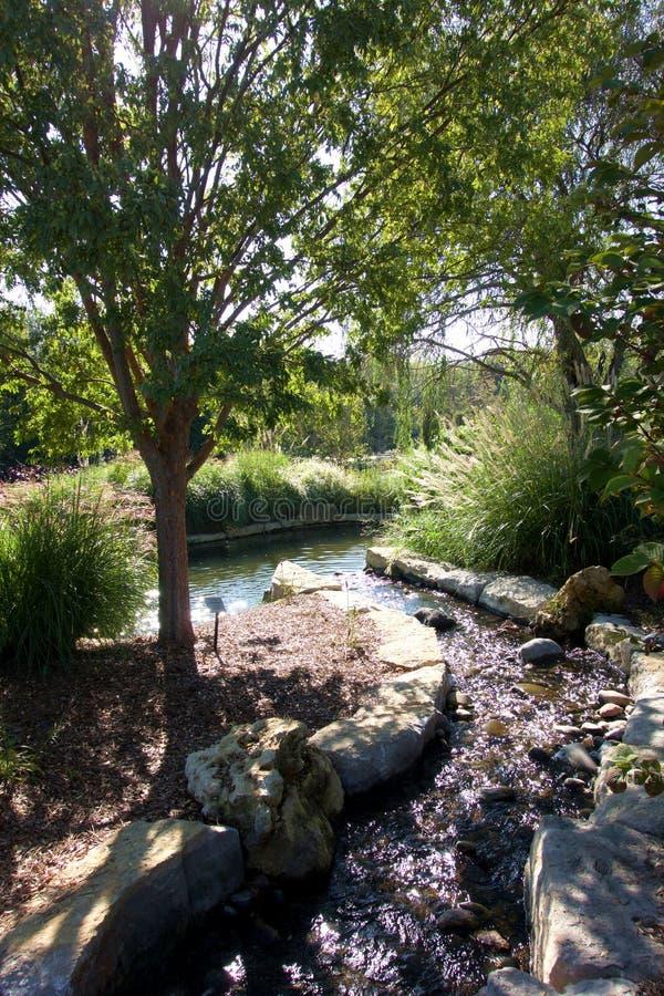 Ρεύμα και λίμνη δενδρολογικών κήπων στοκ φωτογραφία με δικαίωμα ελεύθερης χρήσης
