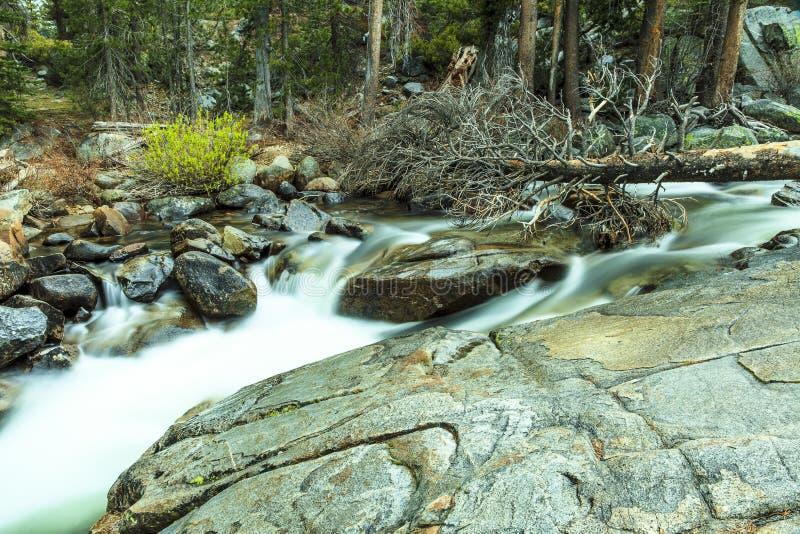 Ρεύμα Yosemite βουνών στοκ φωτογραφίες