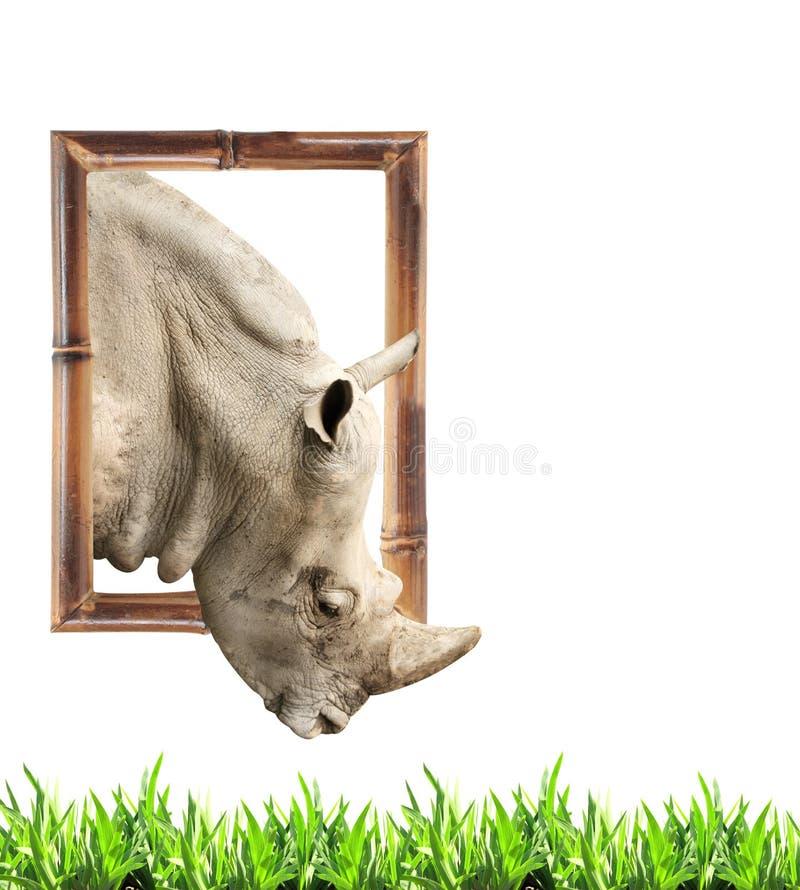 Ρινόκερος στο πλαίσιο μπαμπού με την τρισδιάστατη επίδραση στοκ εικόνα